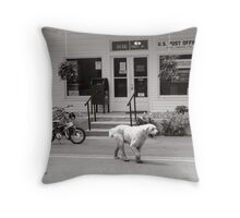 Post Office, Minton Tennessee Throw Pillow