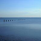 Groynes on the beach by davidrhscott