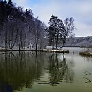 Lake in the first snow country  by Antanas