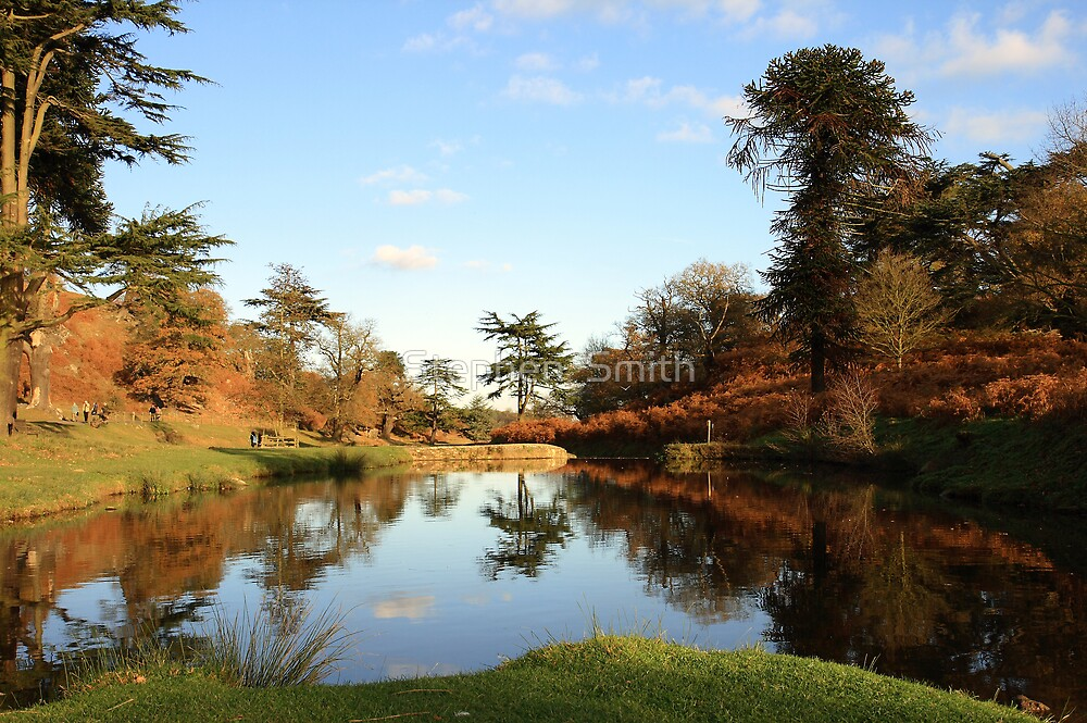 Autumn Park by Stephen  Smith