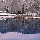 Silence in the winter lake by Antanas