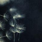 Whispers in the dark 2 by Priska Wettstein