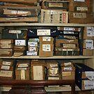 library by dominiquelandau