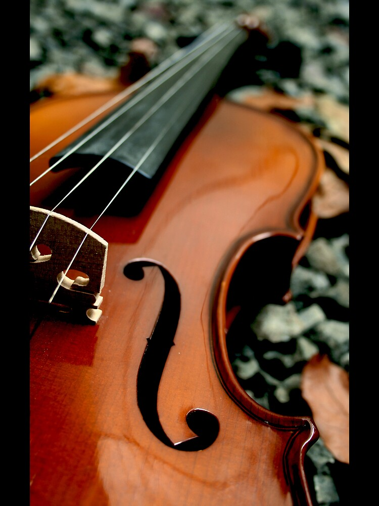 Stradivarius by Rachmat Lianda