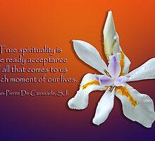 True Spirituality by Bonnie T.  Barry