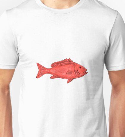 Australasian Snapper Swimming Drawing Unisex T-Shirt