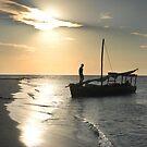 Sunset cruise by Sharon Bishop