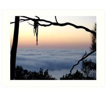 Framed Fog - Mount Barker Summit Art Print