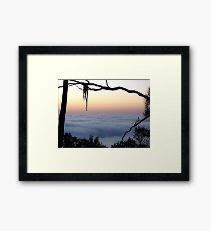 Framed Fog - Mount Barker Summit Framed Print