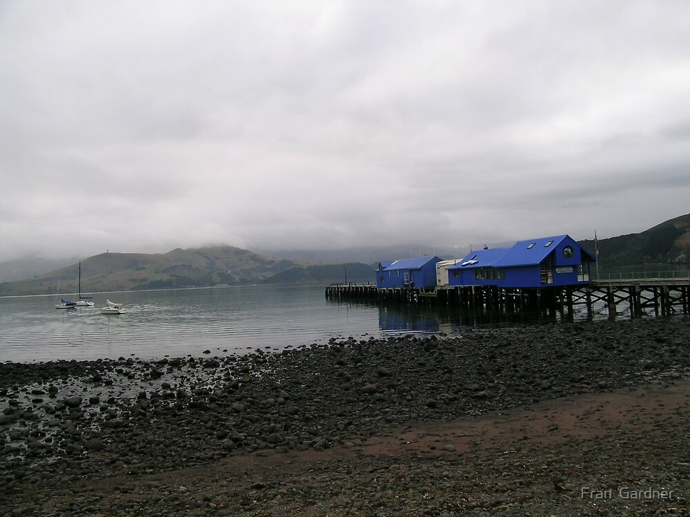 Akaroa Harbour in Winter by Fran  Gardner