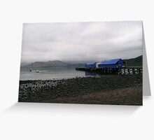 Akaroa Harbour in Winter Greeting Card