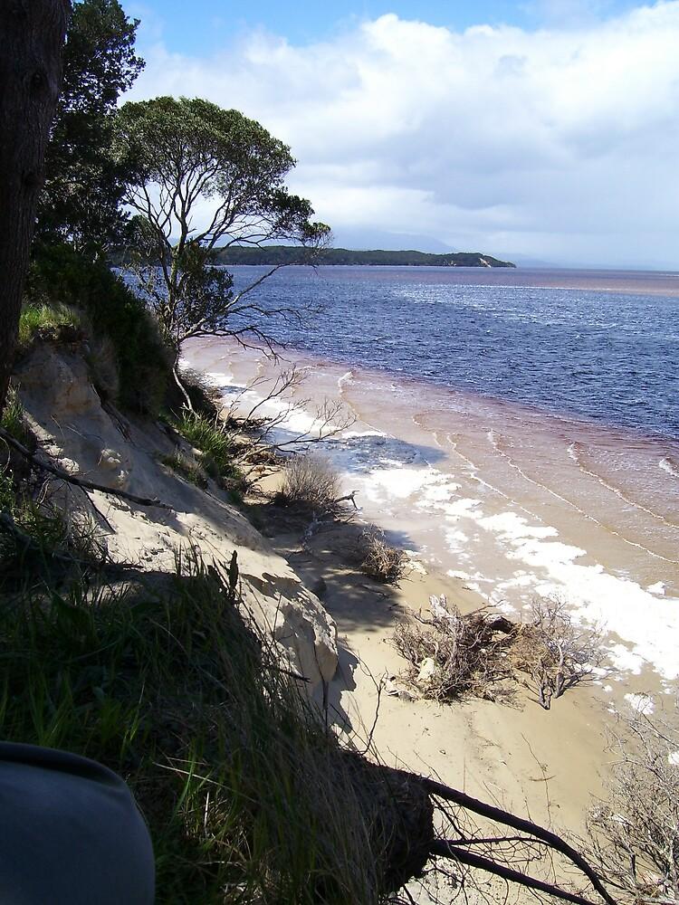 near Strahan, Tasmania - Macquarie Heads by gaylene
