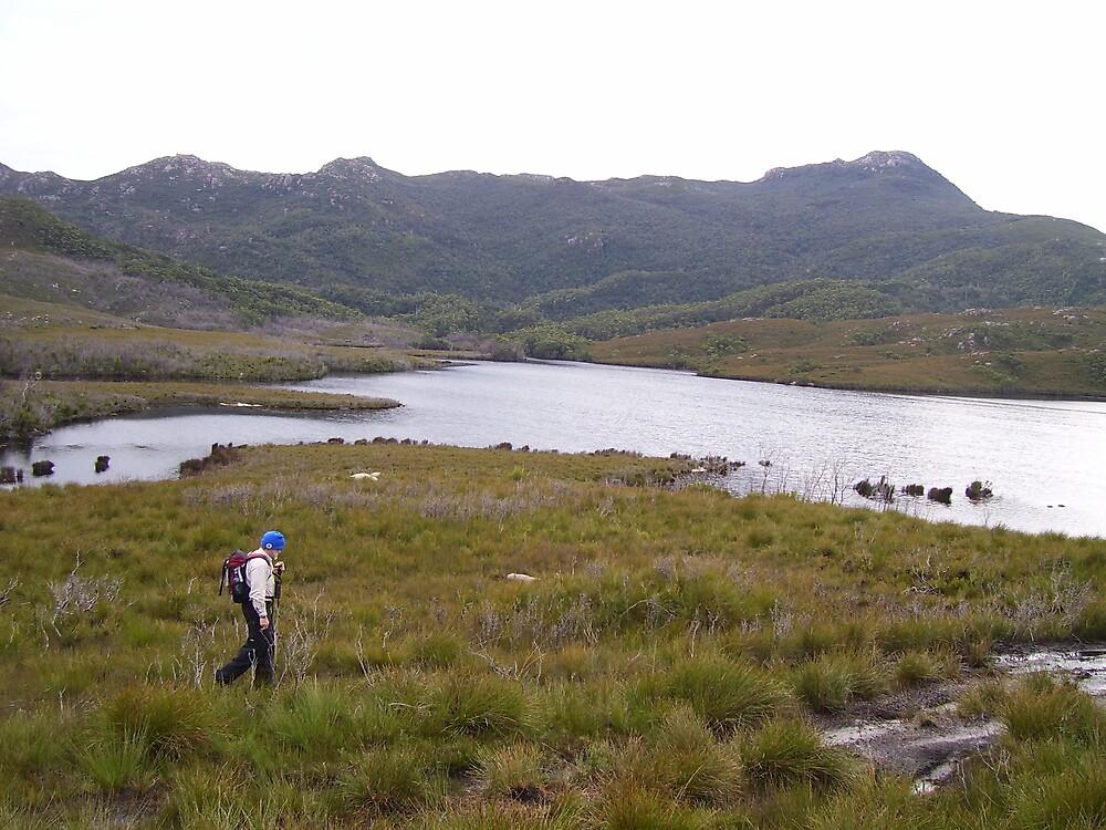 traipsing over the hills and dales near Zeehan, west coast of  Tasmania by gaylene