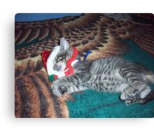 Out cold for the Holidays Canvas Print