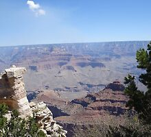 Grand Canyon by rachelfikes18