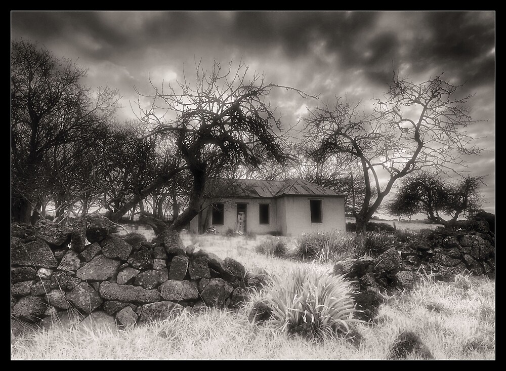 In days gone by by Robert Mullner