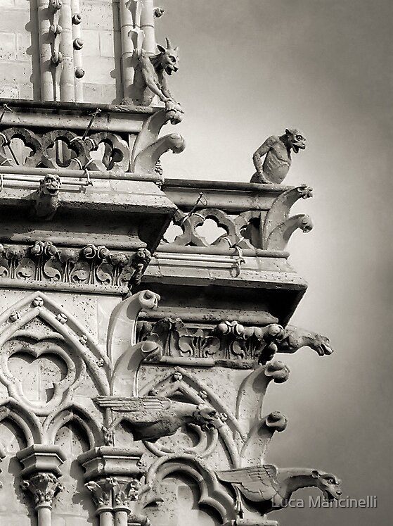 They are watching us... by Luca Mancinelli