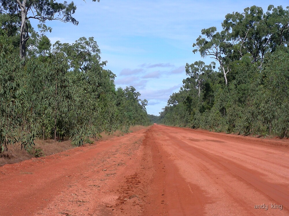 Bauxite road - cape york  by andy  king