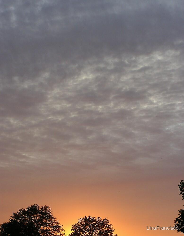 California Sunsets by LinaFrancisco