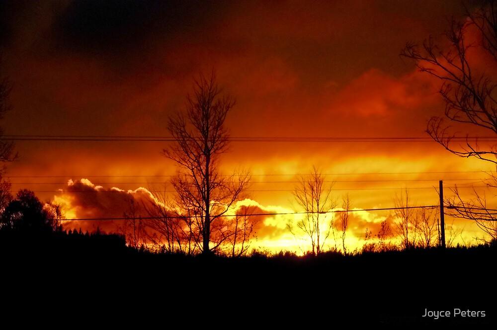 Inferno Sky by Joyce Peters