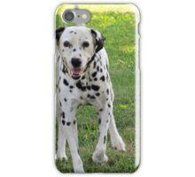 Pet Dalmatian  (1407070463VA) iPhone Case/Skin