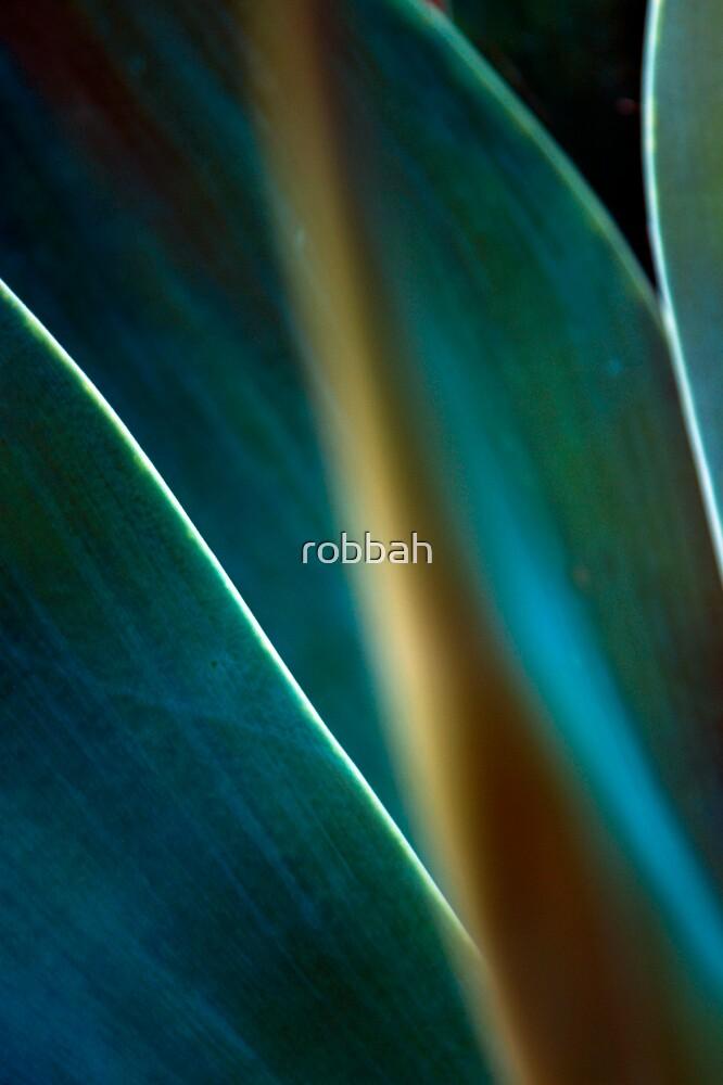 Yukka 6 by robbah