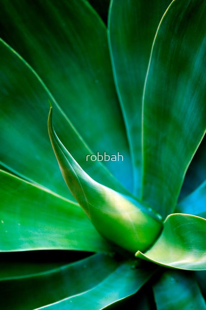 Yukka 7 by robbah