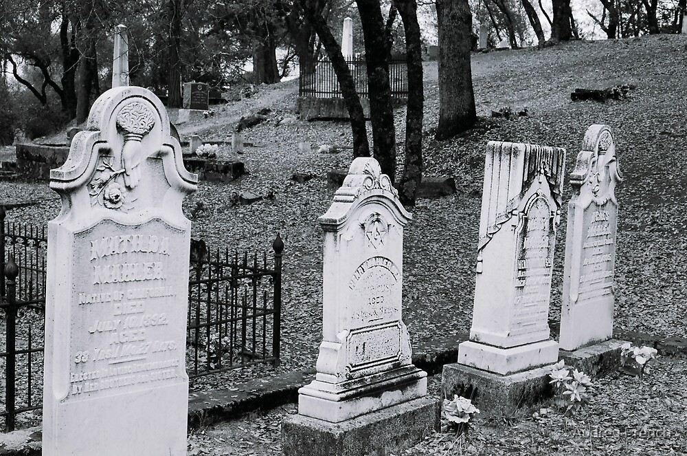Coloma Graveyard  by Audrey French