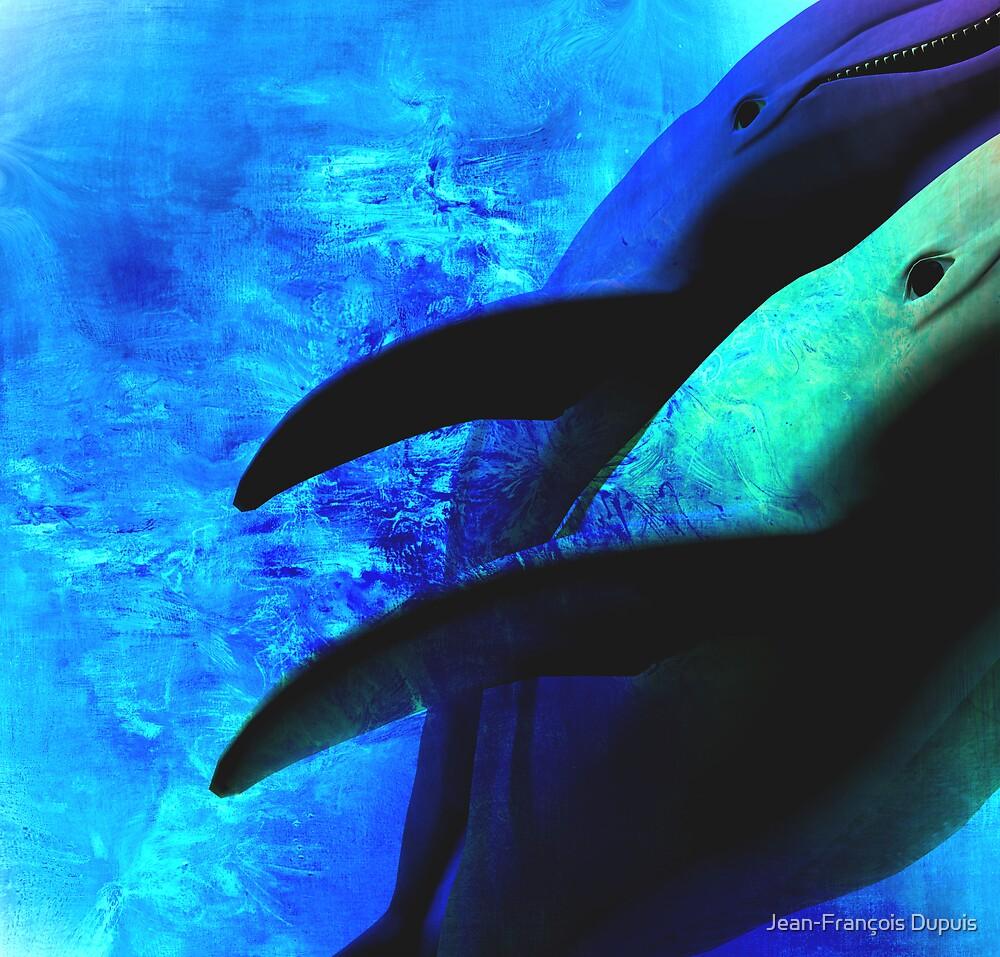 Dolphins by Jean-François Dupuis
