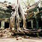 Tree roots on Angkor ruins by fionapine