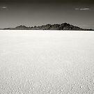 Salt Flats by mymamiya