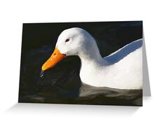 wet duck Greeting Card