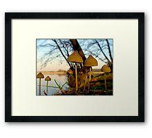 Another world - mushrooms at lake Framed Print