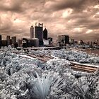 Perth city from Kings Park IR by BigAndRed