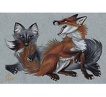Foxies Photographic Print