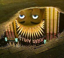 Reflections - Luna Park by Steve Grunberger