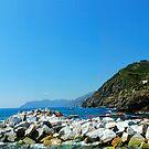 Cinque Terre Panorama by Gino Iori