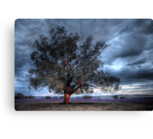 Lone Tree at Sunset Canvas Print