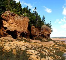 Hopewell Rocks New Brunswick by Joyce Peters