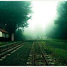 No Trains by Bryan Davidson