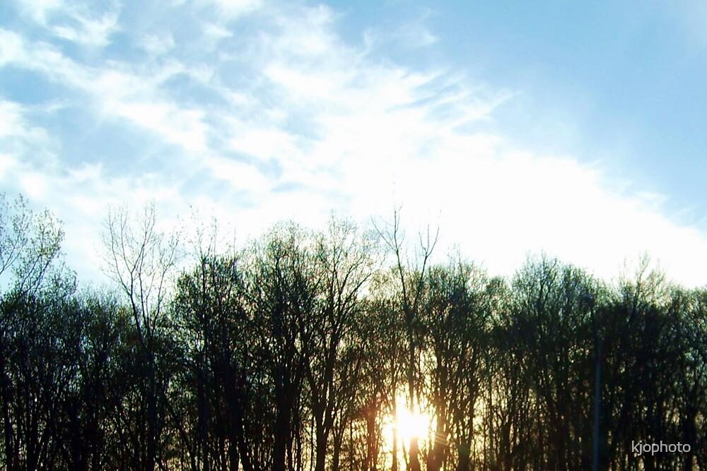 Sunsetting Tree Line by kjophoto