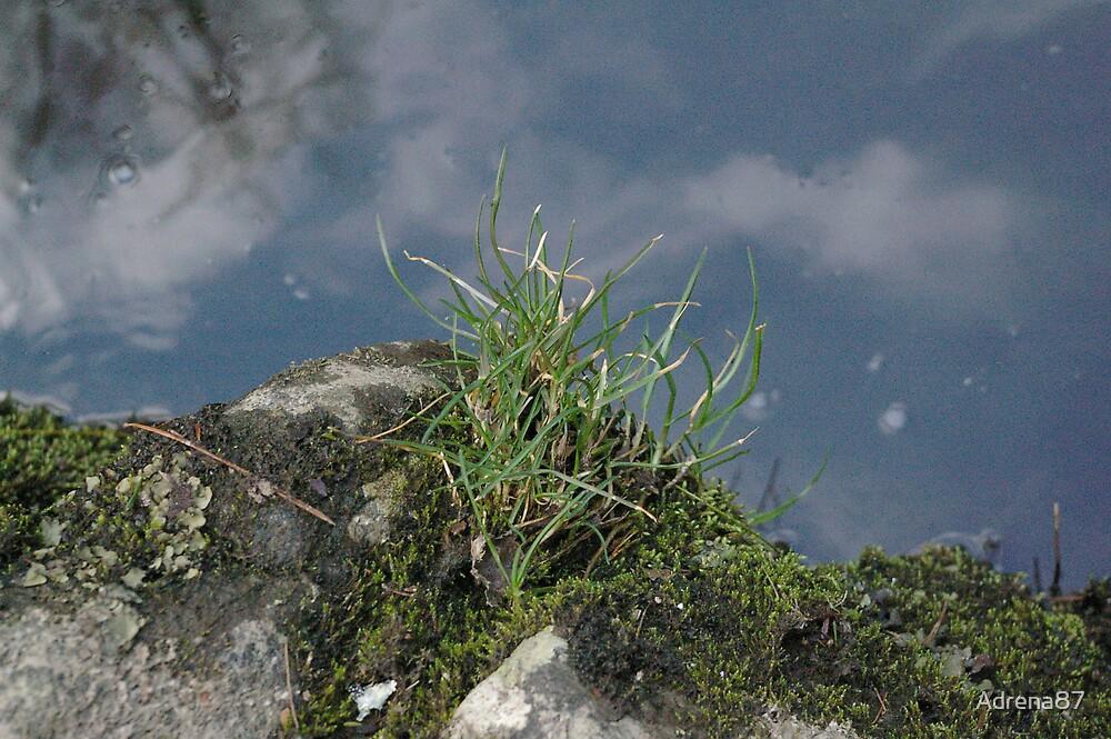 Smoky Mountain Glass by Adrena87