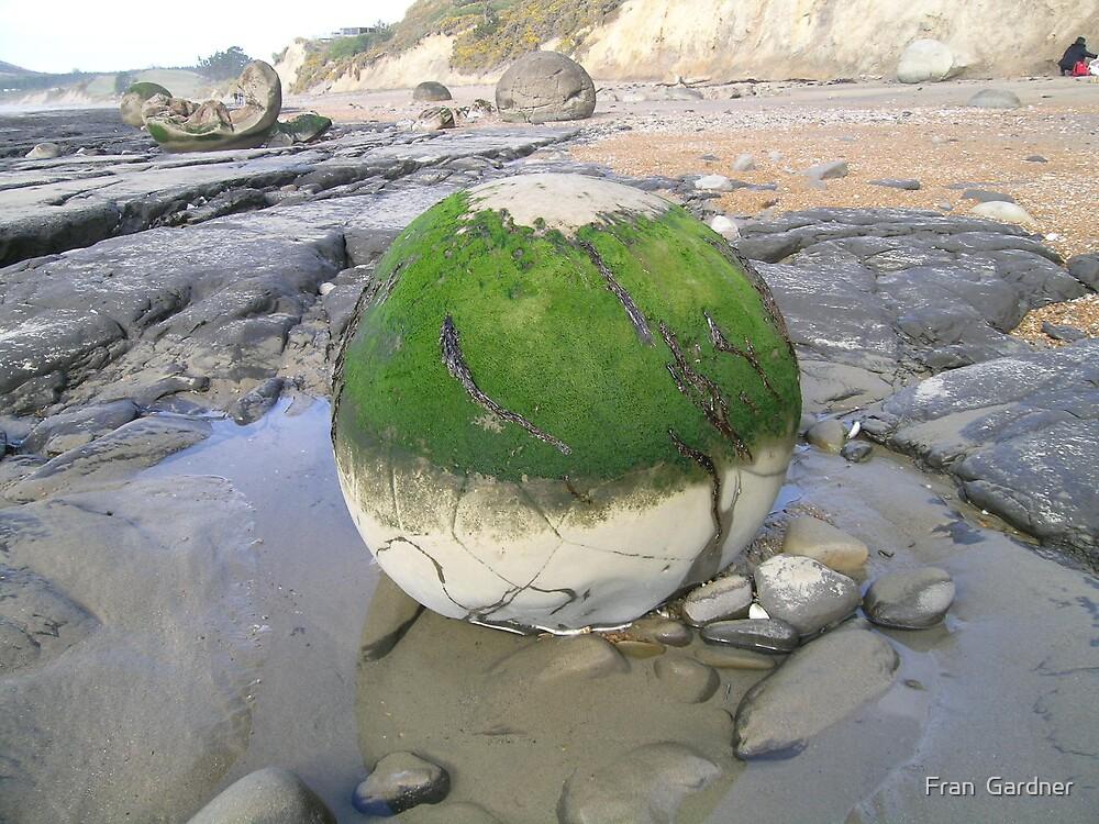 Moeraki boulders by Fran  Gardner