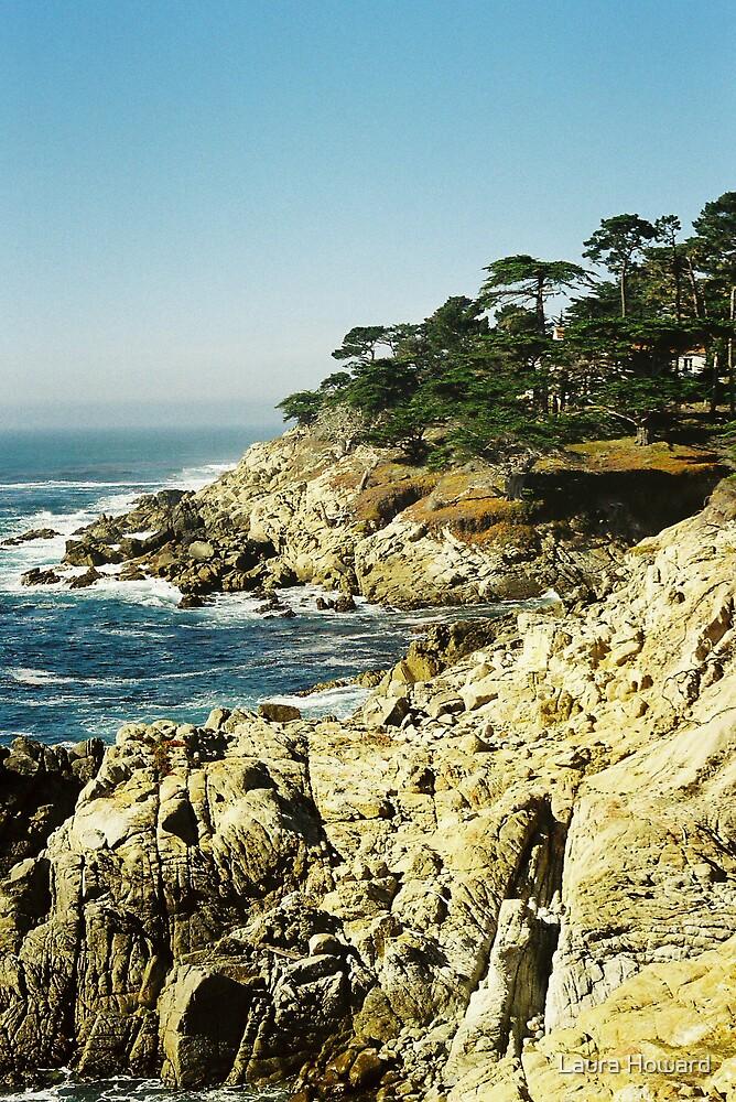 Pacific Coastline by Laura Howard