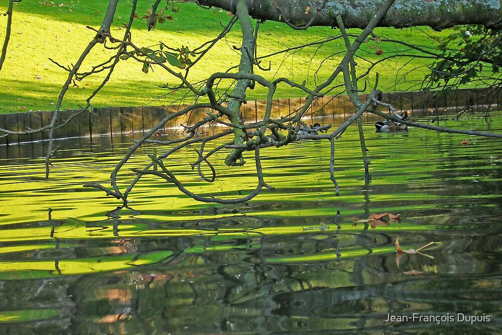 River by Jean-François Dupuis
