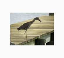 Yellow Crowned Night Heron - Juvenile   (1407111638VA) Unisex T-Shirt