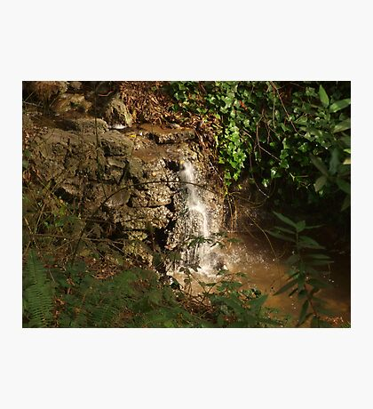 Tiny Stream Waterfall Photographic Print