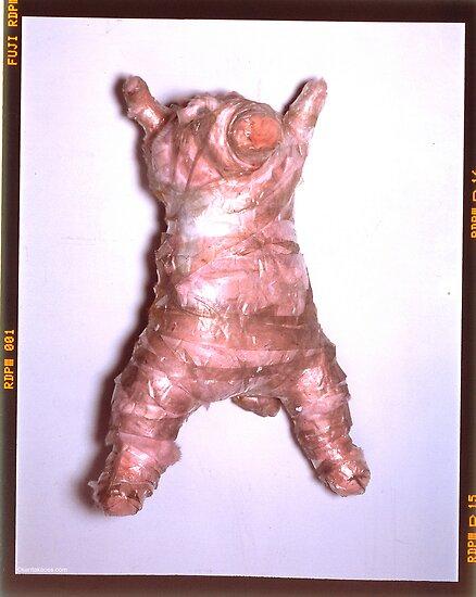 Pig by santakaoss