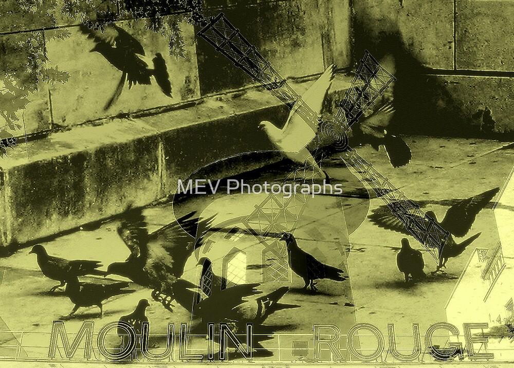 Medley by MEV Photographs