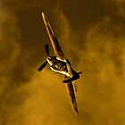 Hawker Hurricane at sunset by PhilEAF92
